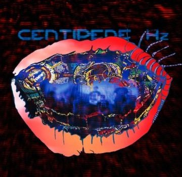 animal collective centipede hz mp3