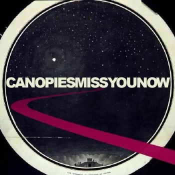 Canopies - Miss You Now