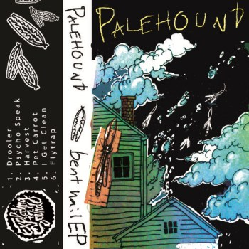 Palehound - Pet Carrot