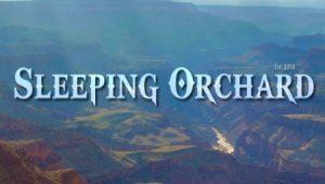 sleeping-orchard