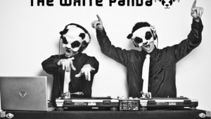 The White Panda interview