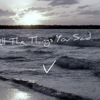 Vizier - All the Things You Said